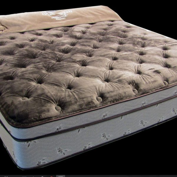 iv santa euro performance response us bed sealy mattress top paula plush caversham
